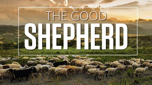 John 10:1-11 One Door One True Shepherd